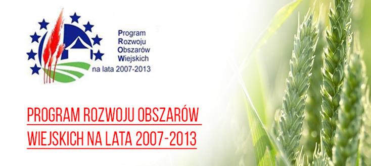 """Zorganizowanie imprezy kulturalno-rekreacyjnej-""""Dni Annopola""""."""