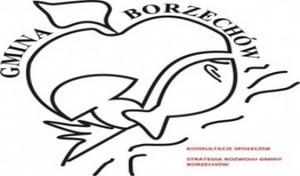 Konsultacje Społeczne- Strategia Rozwoju Gminy Borzechów na lata 2015-2020