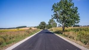 Przebudowa drogi powiatowej 2254L Borzechów – Niedrzwica Kościelna na terenie gminy Borzechów