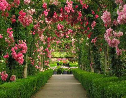 VI Edycja Konkursu na Najpiękniejszy Ogród w Powiecie Ryckim
