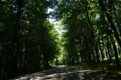 Krzczonowski Park Krajobrazowy