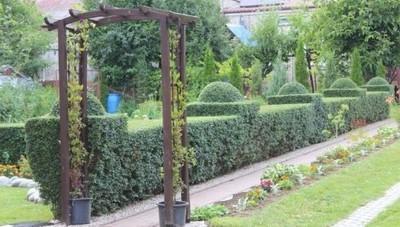 Ogród z Jabłonny wśród najpiękniejszych ogrodów w Powiecie Lubelskim