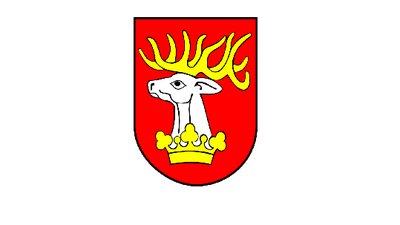 Kierunki rozwoju powiatu lubelskiego - zapraszamy do udziału w konsultacjach społecznych
