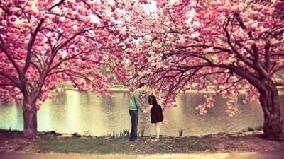 Wiosną miłość się zaczyna...