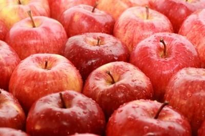 Kolejna dostawa jabłek dla mieszkańców Gminy Jabłonna