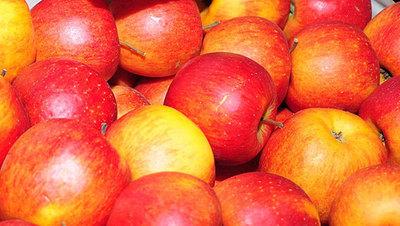 Jabłka dla mieszkańców Gminy Jabłonna - pierwsza dostawa