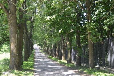 Rekordowe wsparcie dla Gminy Jabłonna na inwestycje drogowe