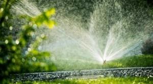Prośba o ograniczenie zużycia wody wykorzystywanej do podlewania