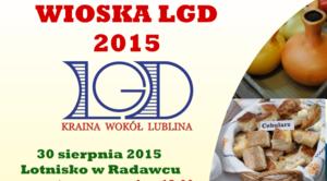 Wioska LGD na Dożynkach Powiatowych w Radawcu
