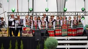 Dożynki Wojewódzkie 2015 w Końskowoli
