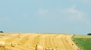 Pomoc gospodarstwom rolnym - niekorzystne zjawiska atmosferyczne