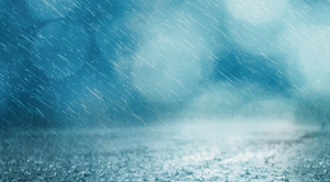 Uwaga na burze z deszczem do 20 mm, oraz porywami wiatru do 65 km/h.