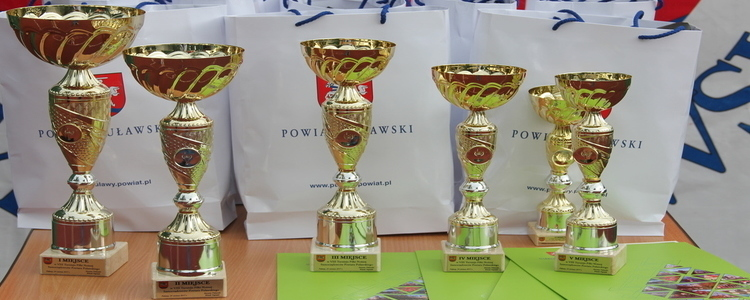 VIII Turniej Piłki Nożnej Samorządowców Powiatu Puławskiego- fotorelacja