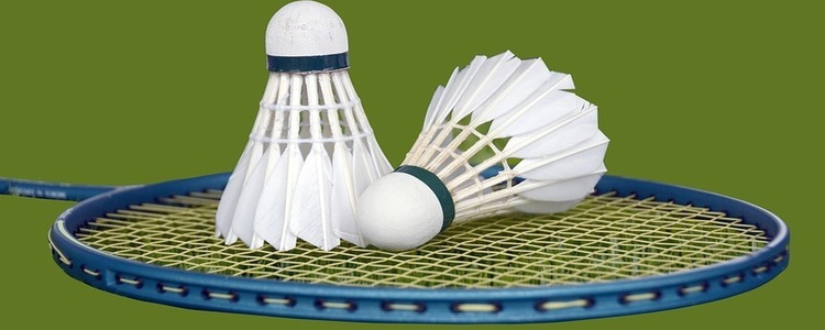 IV Mistrzostwa Puław w Badmintonie