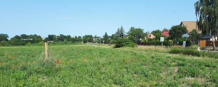 Szóste przetargi ustne nieograniczone na sprzedaż prawa własności niezabudowanych nieruchomości położonych w Żyrzynie