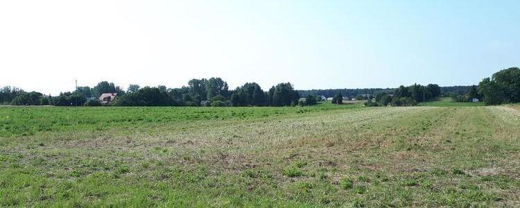 Siódme przetargi ustne nieograniczone na sprzedaż prawa własności niezabudowanych nieruchomości położonych w Żyrzynie