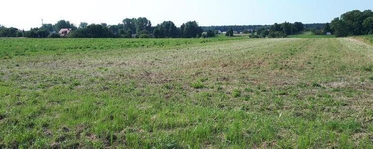 Przetargi ustne nieograniczone na sprzedaż prawa własności niezabudowanych nieruchomości położonych w Żyrzynie