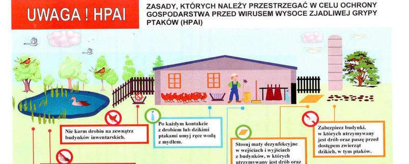 """Ognisko """"ptasiej grypy"""" w powiecie lubartowskim"""