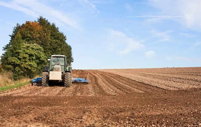 Nabór na bezpłatne kursy kwalifikacyjne w zawodach: rolnik i technik rolnictwa