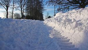 Ogłoszenie o naborze ofert na wybór potencjalnych wykonawców świadczących usługi odśnieżania dróg gminnych i wewnętrznych będących w zasobach gminy Spiczyn w sezonie zimowym 2015/2016.