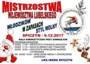 Mistrzostwa województwa lubelskiego młodzików w zapasach