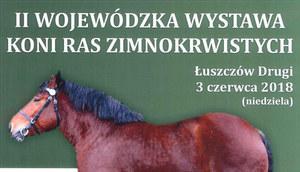II Wojewódzka wystawa koni zimnokrwistych