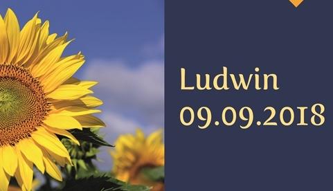 Dożynki powiatowo-gminne w Ludwinie
