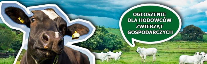 Ogłoszenie dla hodowców zwierząt gospodarczych
