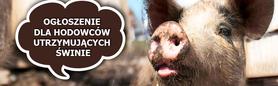 Ulotka dla hodowcow utrzymujących świnie