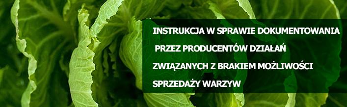 Instrukcja w sprawie dokumentowania przez producentów działań związanych z brakiem możliwości sprzedaży warzyw