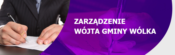 Zarządzenie nr. 15.2015 Wójta Gmin Wólka z dnia 19 lutego 2015 r.