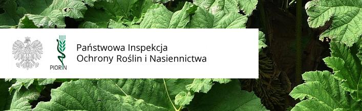 Informacja WIORiN w Lublinie - Barszcz Sosnowskiego