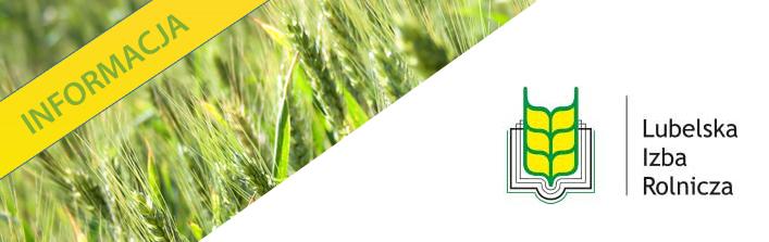 Stanowisko Zarządu Lubelskiej Izby Rolniczej w sprawie suszy i zawiadomienie Wójta Gminy Wólka