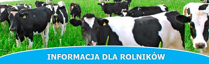 Rolniku pamiętaj o spisie zwierząt!