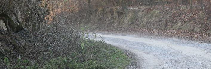 Wąwozy lessowe w gminie Wólka