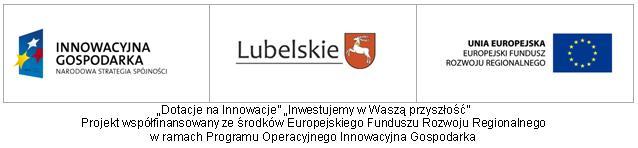 Przeciwdziałanie wykluczeniu cyfrowemu w województwie lubelskim