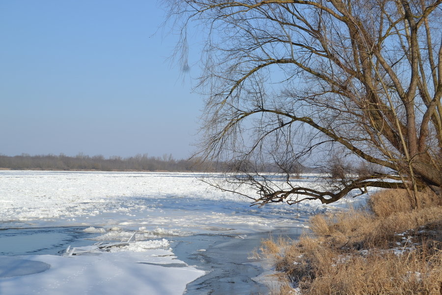 Wisła pod Annopolem skuta lodem - impresja fotograficzna