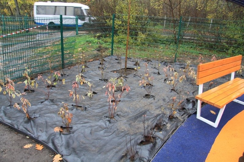 Utworzenie szkolnego placu zabaw przy Szkole Podstawowej Nr 4 w Dęblinie.