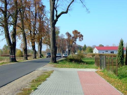 Budowa ścieżki pieszo - rowerowej w m. Dęblin w ciągu drogi wojewódzkiej Nr 801.