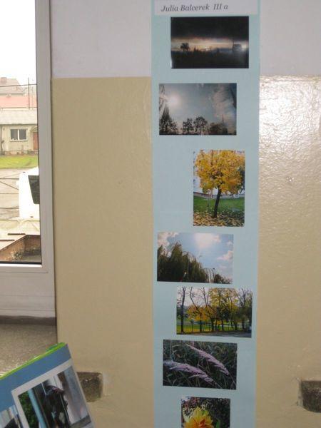 Jesienna Wystawa Twórczości Uczniów ZSO