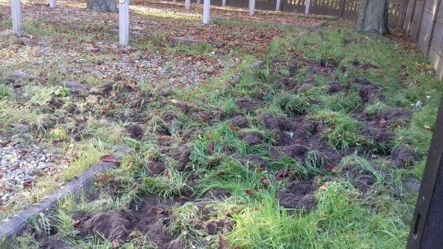 """W dniu 17 października br. odbyło się porządkowanie terenu cmentarza wojennego """"Balonna"""" w Dęblinie."""