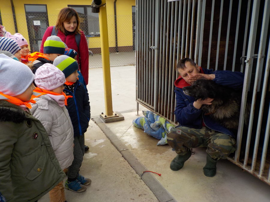 Wycieczka do schroniska dla zwierząt