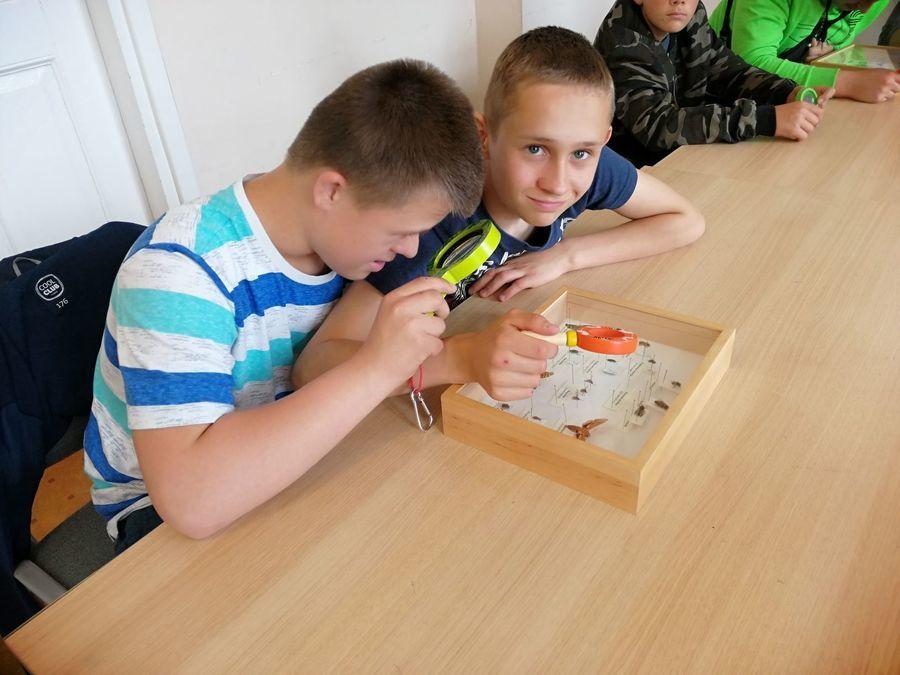 Uczniowie SOSW w Dęblinie w niezwykłym świecie owadów