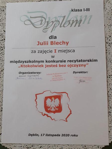Dyplom Julii Blechy - autor p. Malwina Blecha