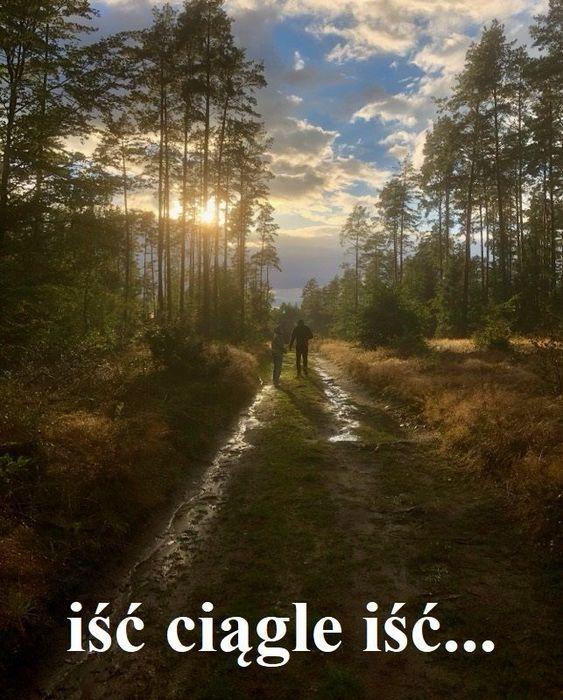 2 osoby na końcu ścieżki w lesie