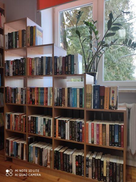 Nowe książki w Bibliotece 3