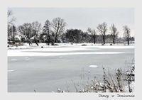 Zimowe klimaty na fotografiach