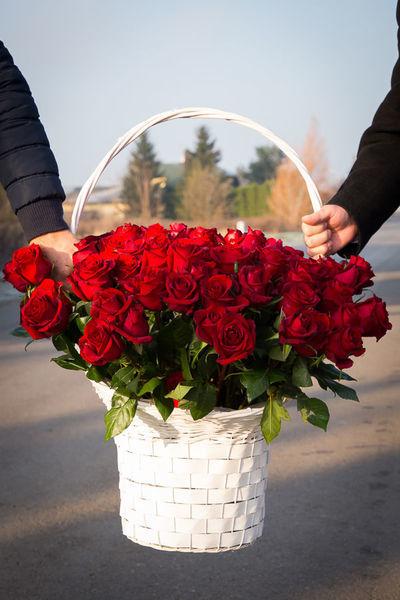 Na zdjęciu kosz ze 100 różami