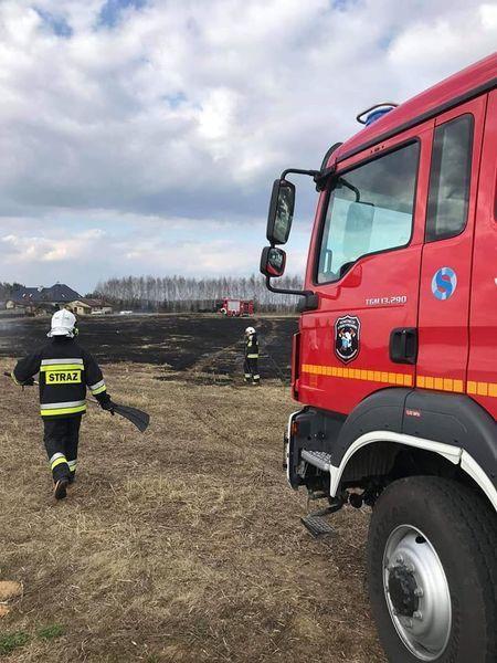 Na zdjęciu gaszenie płonących traw