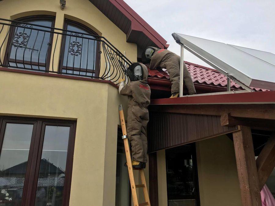 Na zdjęciu akcja usuwania owadów z budynku mieszkalnego